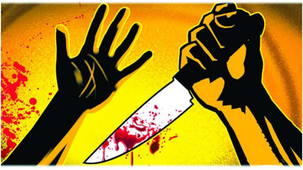 Budh Vihar Murder Case Woman Dies After Man Stabs Her 25 Times Check CCTV Video